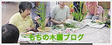 もちの木園ブログ